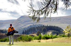 Value of golf tourism up by 30 per cent in past decade