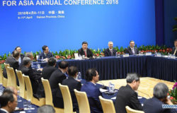 Xi vows non-stop effort in reform, opening up
