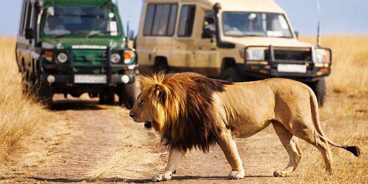 Kenya / Photo: Sergey Novikov