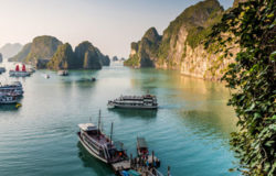 APAC arrivals continue to outstrip global average