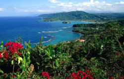 Jamaica's Tourism Minister: Tourist arrivals increase by 9% in January
