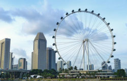 Another record year for Singapore tourist arrivals