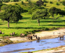 Tanzania government partners with private sector to drive Lake Region tourism