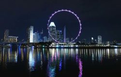 Singapore braces for plunge in visitor arrivals this year