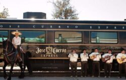 Tequila train will allow you to experience authentic Mexican culture