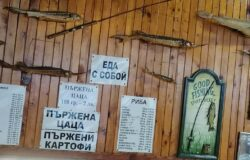 Bulgaria reopens restaurants on March 1